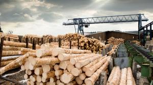 A lumber yard in Canada
